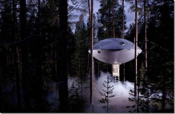 awesome-treehouses-16
