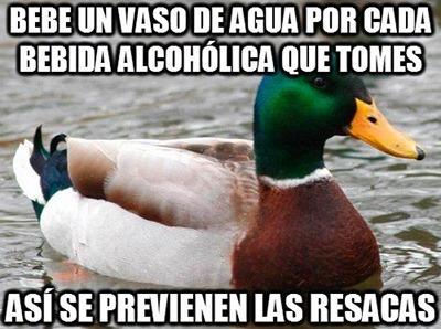 consejos del pato (8)