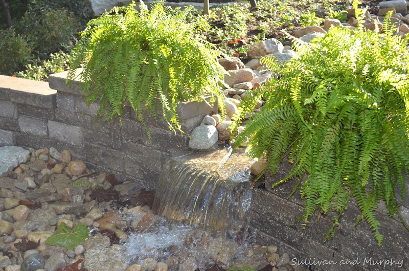 waterfall wall into pondless basin