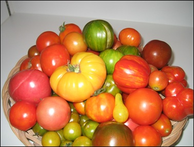Heirloom Tomatoes 2003