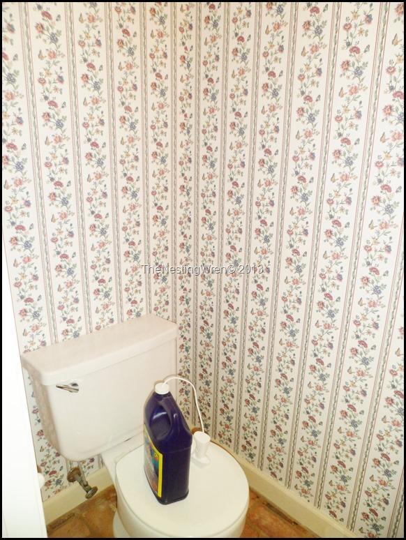 Pirahna wallpaper stripper
