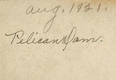 Pelican Dam Aug 1921 Solway antiques back