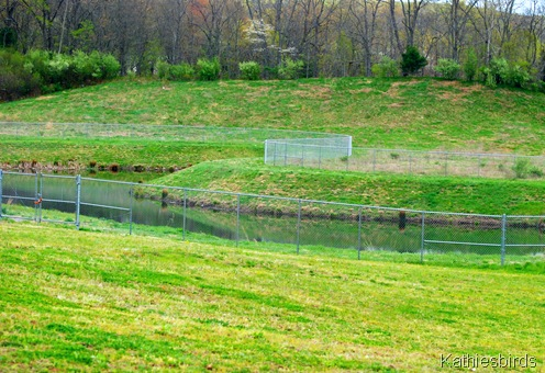 10a.Retention pond-kab