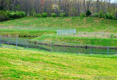 10a.Retention pond-kab