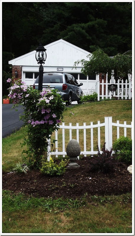 landscaping front fence 005