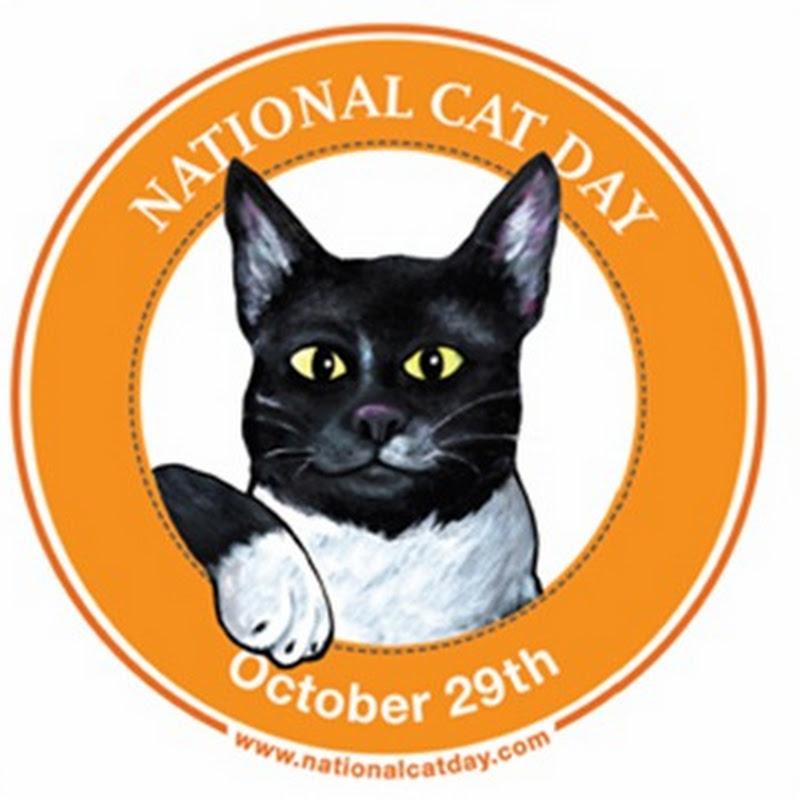 Día Nacional de los Gatos