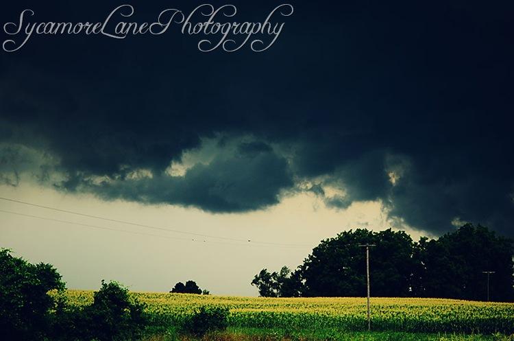 storm-w