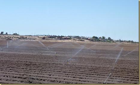 2012-09-28 - AZ, Oatman to  Yuma -018