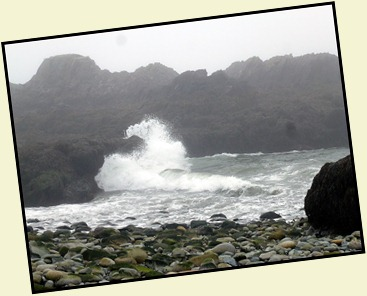 44 - Quoddy Head SP -  Surf was pounding