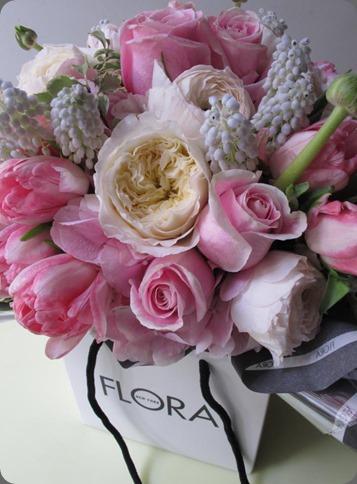 522554_10151375857438978_1413856267_n FloraNY