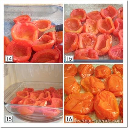 Tomate Seco3