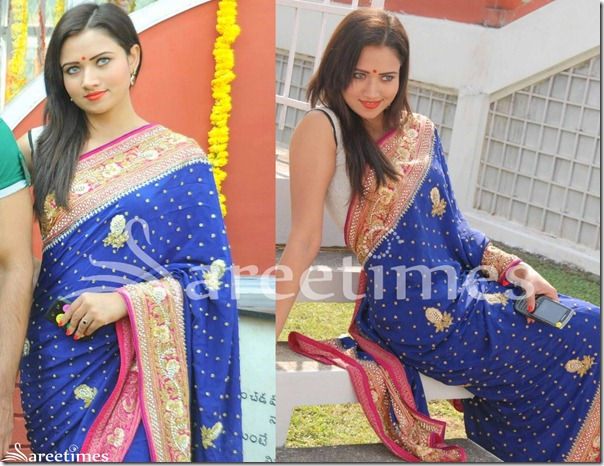 Sunita_Rana_Blue_Embroidery_Saree