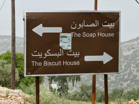 Indicator rutier la Ajloun