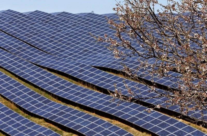 les-mees-solar-farm-15