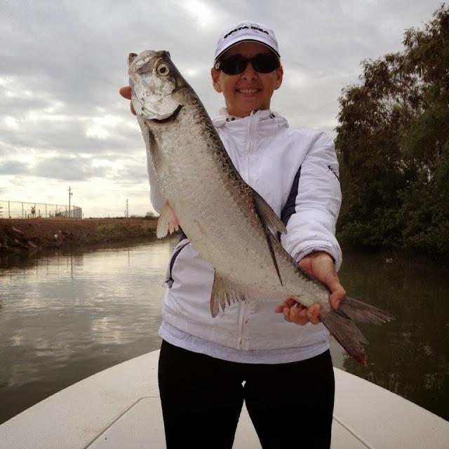 Arroyo city fishing report january 2014 for Arroyo city fishing