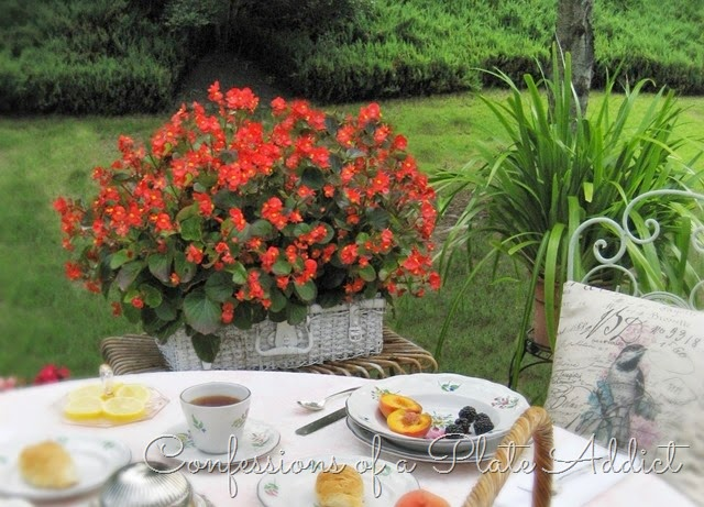 [CONFESSIONS%2520OF%2520A%2520PLATE%2520ADDICT%2520Shabby%2520Picnic%2520Basket%2520Planter%255B7%255D.jpg]