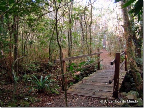 Trilha com Ponte de Madeira Ecoparque Sperry Gramado
