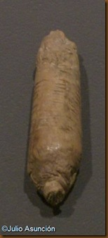 Cueva de Abauntz - colgante con computos lunares - Museo de Navarra