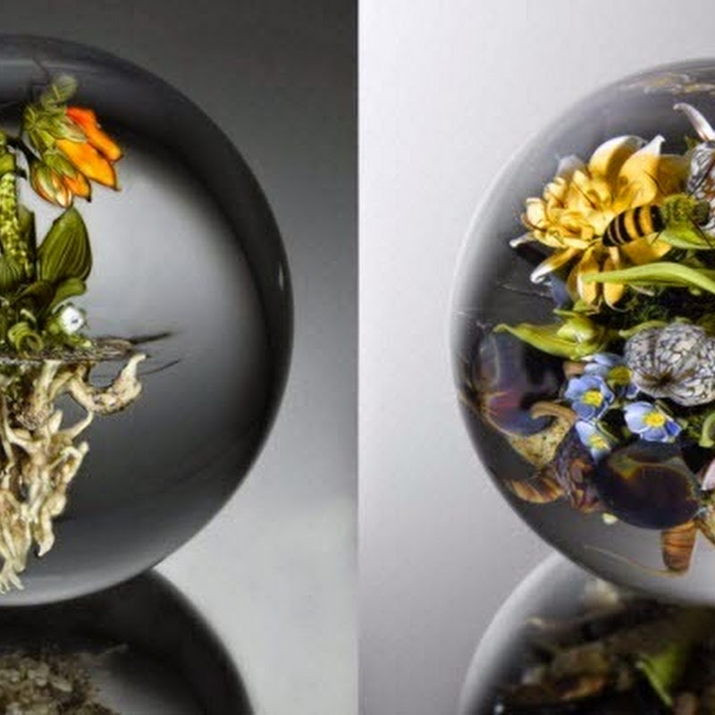 Glass Paperweights by Paul Joseph Stankard
