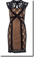 Oasis Spot and Lace Dress