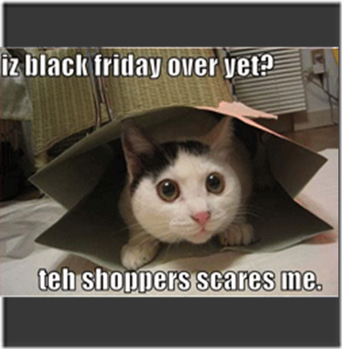 black_friday_cat