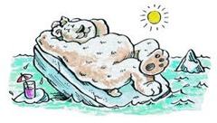 Sunbathing bear
