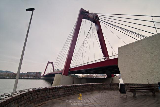 20111025-HOLLAND-D90-0071