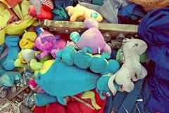 animal pile