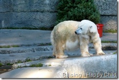 Jan7_Zoo7