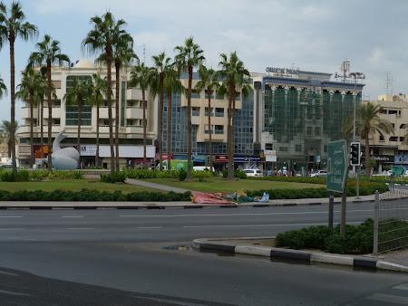 Locuri din Dubai: Fish Roundabout