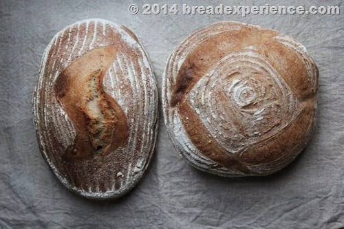 bread-sprouted-flour_4100