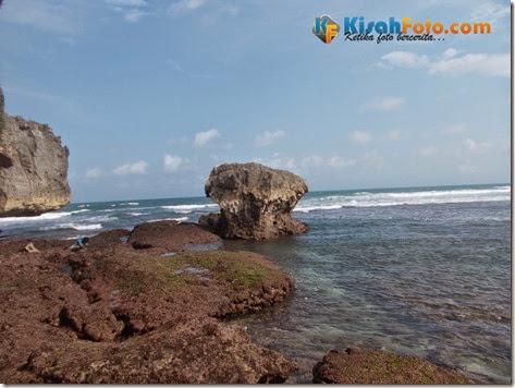 karang pantai watu kodok_02