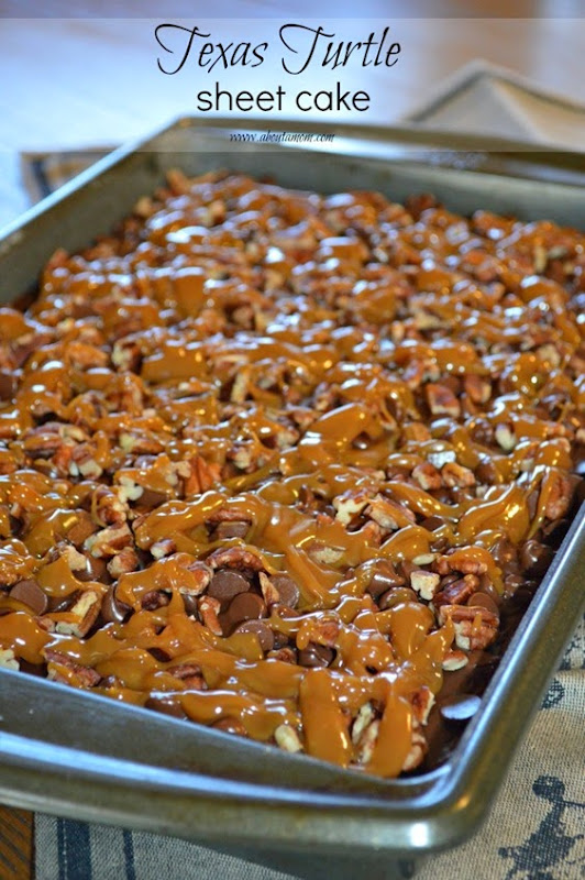Texas-Turtle-Sheet-Cake