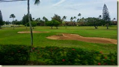 20140504_turtle bay gc (Small)