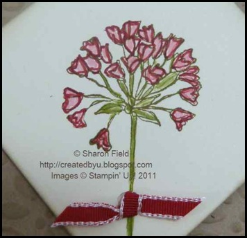 00978_Simply_Soft_Markered_Flower_0214