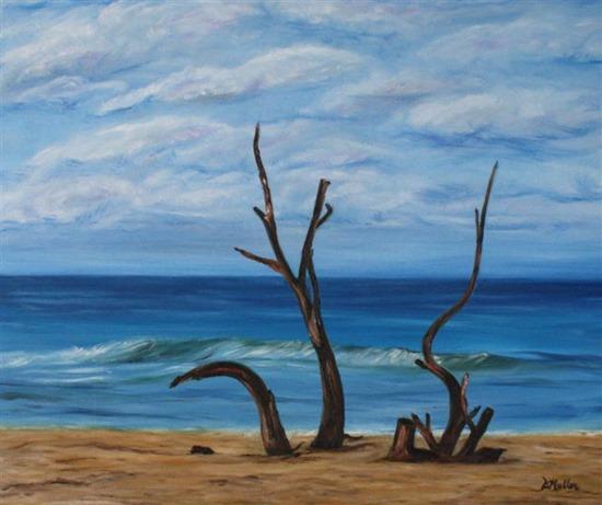 Driftwood Donna Muller