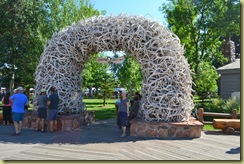 Rotary Elk Antler Arches