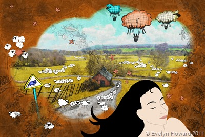Sheep  Country © Evelyn Howard 2011
