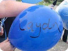 Caydin (Medium)