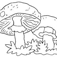 champignon-%25287%2529.jpg