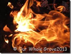 fire portal 2