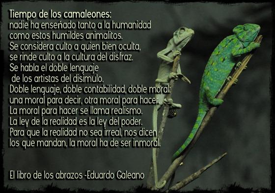 tiempo de camaleones