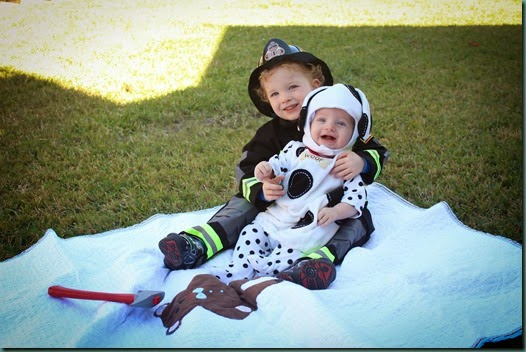 Firefighter and Dalmatian