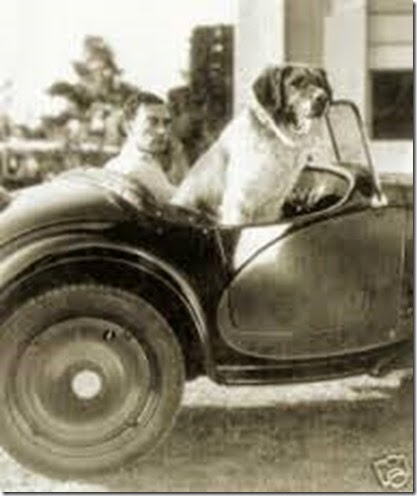 Buster_Keaton___dog_72_dpi