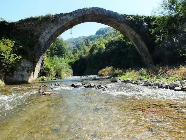 ponte 2013_3.jpg