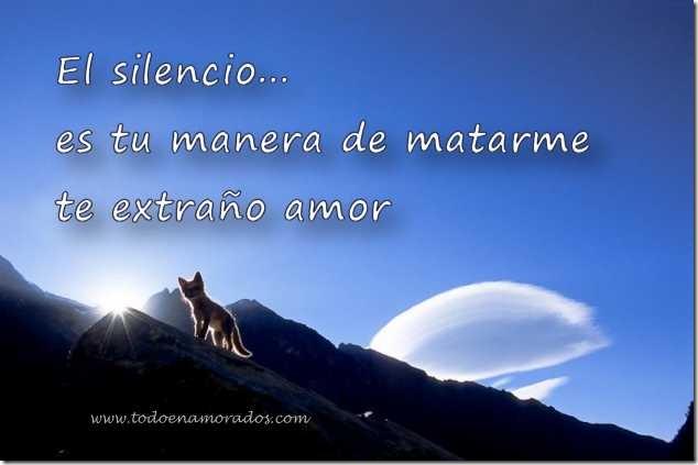 silencio 23 1