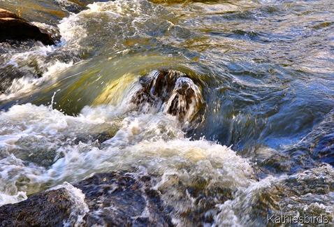 1. Sabbatus River