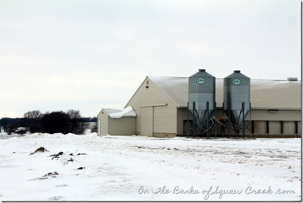 turkey barns