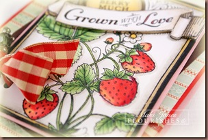 Strawberries_fllc_1-2_edite