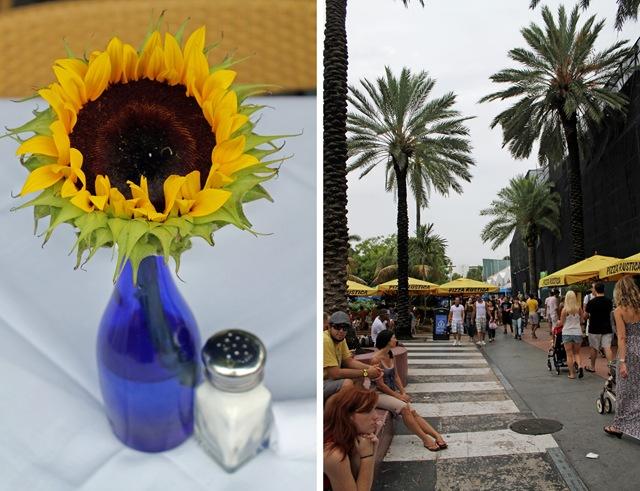 2012-6-22 Miami Surprise Party11